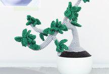 bonsai e   plantinhas