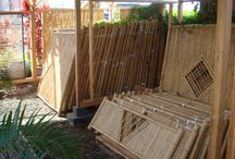 Bamboo / Work bamboo as both functional and decorative touches to your landscape or garden.