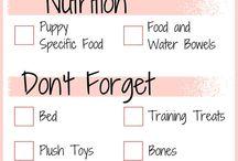 Puppy preparations