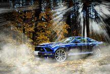 Shelby GT500 / Moja zabawka i chluba.