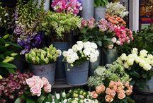 flower market displays