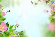 Virágok....Élő háttérkép........