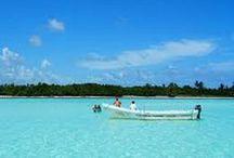 Mayavision Tours Excursiones a Marinas en Riviera Maya