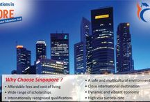 Singapore University / Top universities of Singapore are hot favorite of students aspiring to study abroad because of the technological advancements of Singapore University.