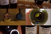 Wine Tasting Notes / Check out what I've been drinking lately