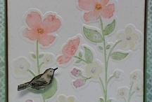 SU - Wildflower Meadow