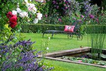 Giardini, fiori....