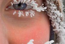 waldwärts winter