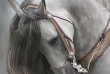 Bello Animal noble y leal