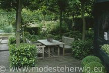 tuin/garden/balkon