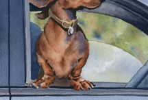 dachshunds. .. got to love them