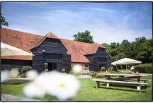 Blake Hall wedding / wedding photographs from Blake Hall in Essex