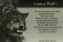 Wolves & quotes