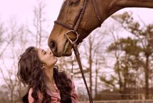 Horses - Forever and Ever Love of Horses