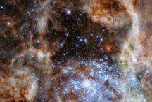 vie cosmique