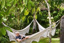 Design • Backyard Oasis