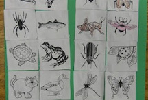 Insects / by Monica Bybee
