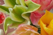 flowers I love / by Cisca de groot