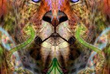 Animales Llamativos