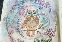 coruja floresta encantada / floresta encantada
