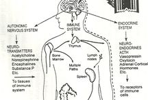 Complimentary therapy / Bowen technique Jin Shin Jyutsu Faciokinetics Aromatherapy homeopathy Living essences / by Susanjane Morison