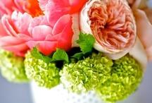 Bloomin beautiful