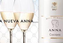 Los Vinos y Cavas de La Carbonera