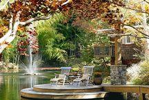 Ponds en water garden