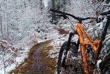 Bisikletçilik