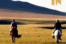 Mongolia Travel / All about travelling in Mongolia. Where to go, what to see.