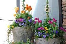 Blumen, Deko & Co