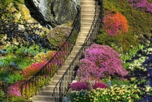 Fascinating stairways