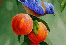 Meyve rölyef