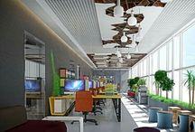 ceiling & tavan