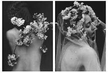 Photo flowers 1