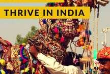 India Bucket List / Best things to see and do in India, dream destinations, transportation, attractions, excursions, places to see, national parks, hikes, hostels, hotels.