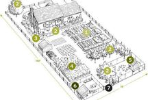 Rumah Kita Dream Project / Infirmary n gardening