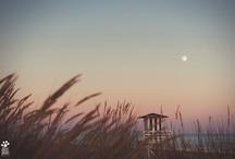 Favorite Places & Spaces / Sitios , lugares y momentos con algo especial....