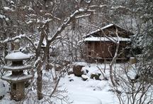 Yukimi Chakai- Traditional Japanese Snow Viewing Tea Ceremony