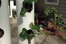 Strawberry/Vegetable/Herb Planter / A vertical solution to grow your plants.