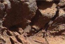 Mars 39