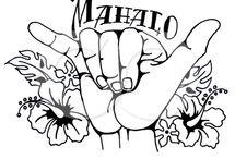 Hawaii_Symbole