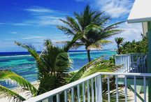 Grand Cayman / Grand Cayman is full of beauty...and fantastic scuba diving.  / by CheapCaribbean.com