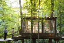 ~CABINS & TREE HOUSES~ / by Sea Shepherd Lass