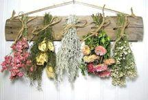 More than herbs