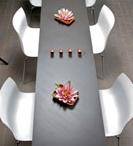 salon/spa / by Rachael DeMaggio