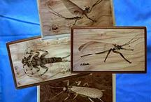 art in the fly boxes / Boxes for flies fine with the inlay technique with precious woods