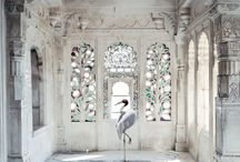 Karen Knorr / The exclusive collection in cooperation with the artist Karen Knorr