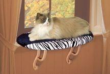 Furniture, Condos & Cat Houses