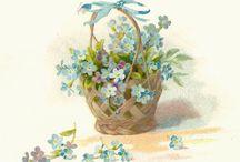 Cosulete cu flori